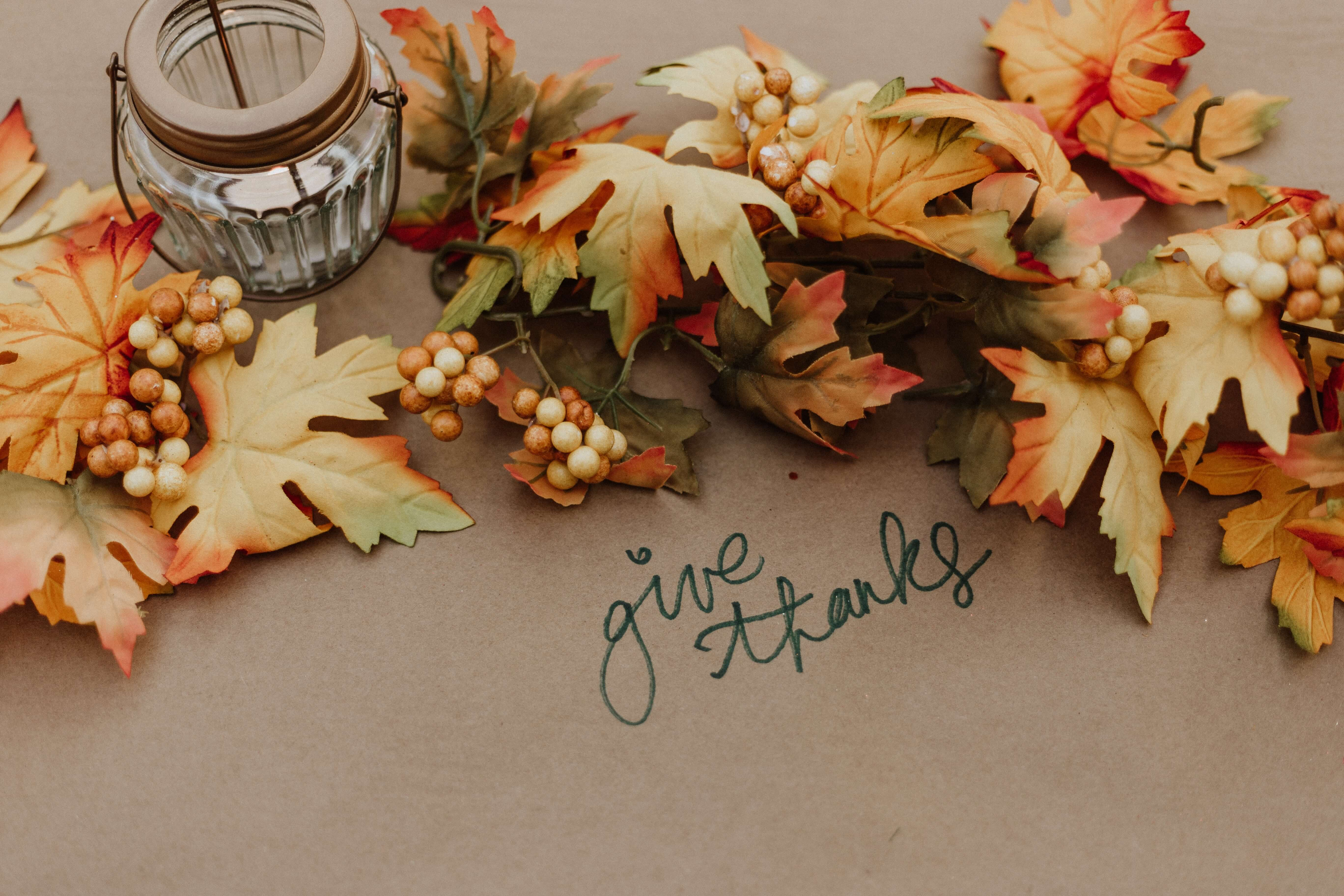 Happy Thanksgiving from the Jungo Team!